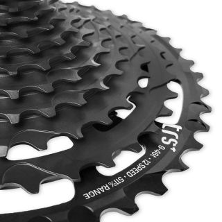 Piñon E Thirteen Cassette TRS+ 9-46T 12 speed Negro